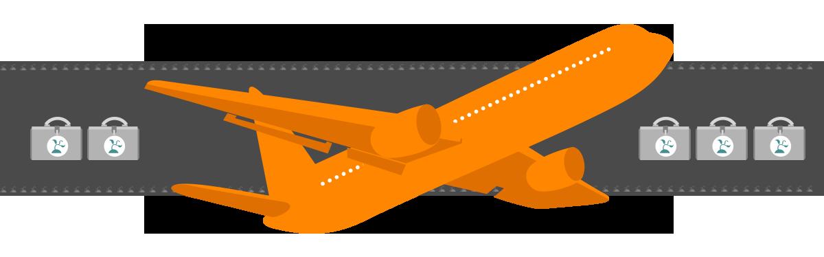 Ninja Beaver - Infographic Design - Seed Runway