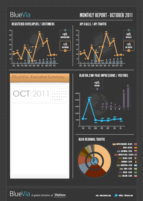 Ninja Beaver Monthly Report Infographic 1
